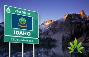 Is CBD Legal In Idaho?